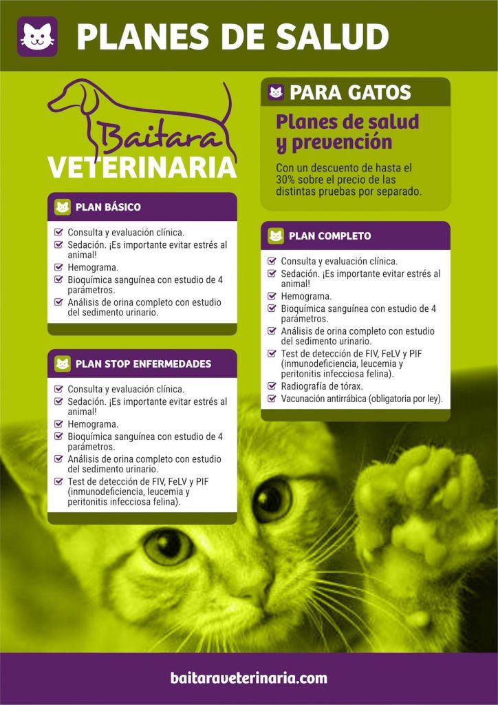 Planes de salud para gatos en Baitara Veterinaria - Planes
